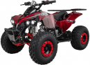 Kinder Quad Miniquad ATV S-10 125 cc Metallic-Rot
