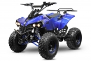 Kinderquad Warrior Eco midi Quad 1000W S8 48V 8 Zoll Wellenantrieb